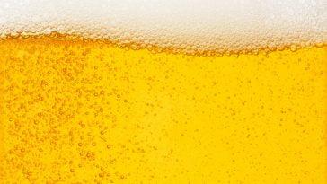 sector cervejeiro