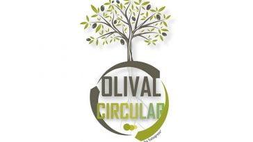 Olival Circular
